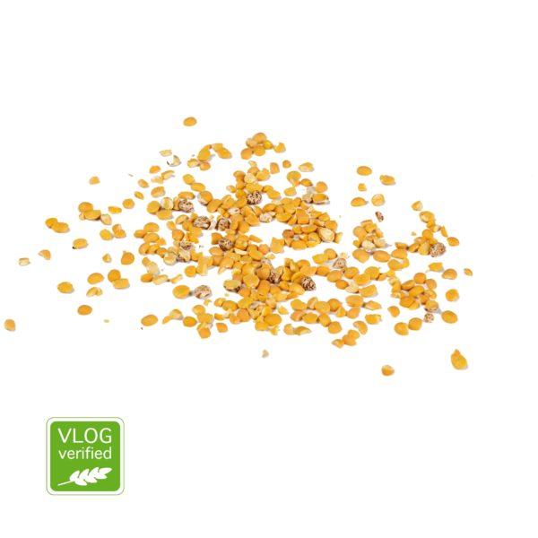 Lupine Plus non-GMO vlog
