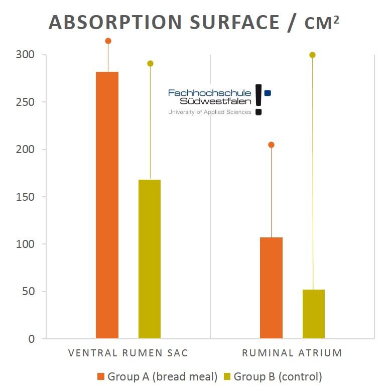 Absorption surface EN Calves breadmeal